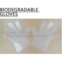 China Wholesale disposable gloves, plastic gloves, biodegradable gloves, compostable gloves, bio gloves, corn starch gloves wholesale