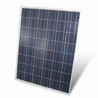 China Monocrystalline Solar Module with 30V Voltage, Measures 1,650 x 991 x 40mm wholesale