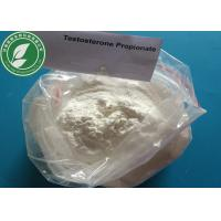 China USP Standard Steroid Powder Testosterone Propionate For Fat Loss CAS 57-85-2 wholesale