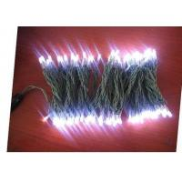 China 2013 High Power waterproof LED christmas light for decoration holiday wholesale