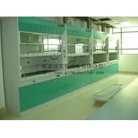 China Grey / Blue Steel Laboratory Fume Hood Durable With Alkali Resistance wholesale