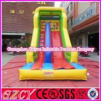 China Cute Inflatable Racing Slide For Commercial Use wholesale