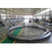 China Slewing Bearing and Slewing Ring with max diameter up to 11 meters with cheap price and good quality wholesale