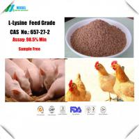 China Quality L-Lysine 657-27-2  amino acids for  animal nutrition feed additive on sale