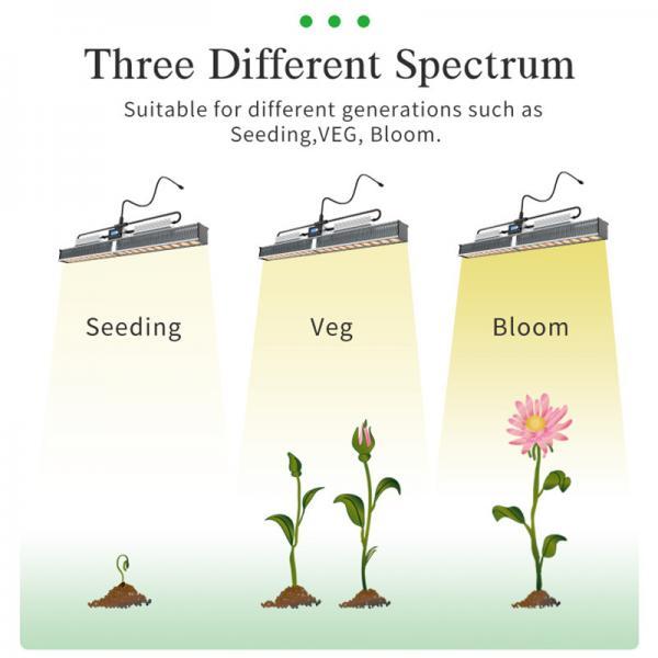 Quality 480W Full Spectrum LED Grow Light Phytolamp Tube Bar Led Strip For Indoor Greenhouse Plant Flower Seed vegetables tent for sale