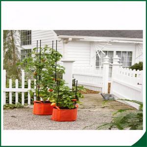 China Felt Weatherproof Plant Grow Bags For Home / Garden Grow Bags For Plants 12X24 Grow bags Felt material wholesale