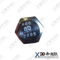 China Duplex 2205 China hardware stainless steel bolt with nut wholesale