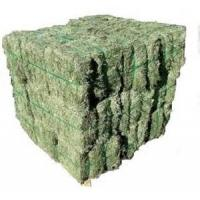 China Alfalfa Hay wholesale