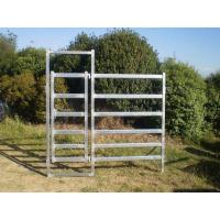 China From Budget Cattle Panels To Extra Heavy Duty Portable Cattle Panels For sale wholesale