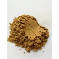 China thorn/spikes prickly sea cucumber powder, stichopus japonicus powder, sea cucumber protein wholesale
