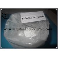 China Tribulus Terrestris Powdered Extract 55056-80-9 99% For Lower Blood Pressure wholesale