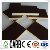 China 1220X2440X18mm Black Film Faced Construction Plywood wholesale