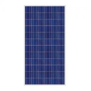 China Polycrystalline  solar panel 250W wholesale