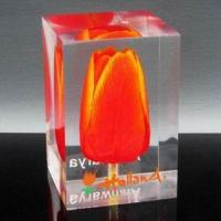 China Real Flower Insert Clear Resin Paper Weight, Customized Designs are Accepted wholesale