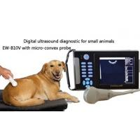 Wholesale Handheld Veterinary ultrasound scanner EW-B10V with Micro-Convex probe for abdominal,cardiac and reproduction of animals from china suppliers