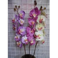 China Artificial Flowers,Butterfly Orchid wholesale