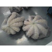 Buy cheap High quality fresh good IQF frozen octopus/fresh octopus flower from wholesalers