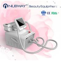 China 2015 hot new products cryolipolisis beauty machine for loss weight, body shaping on sale