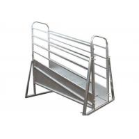 Buy cheap Adjustable Mobile Cattle RampOverhead Bracing 3.6 / 4.8m Fixed Height from wholesalers