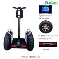 Quality 21 Inch Tire 4000W Brushless Segway Electric Scooter With Double Battery System for sale