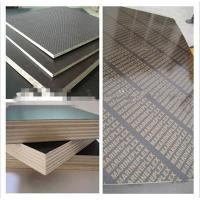 China China Film Faced Plywood Factory /Shuttering Plywood/Marine Plywood with cheapest Prices on sale