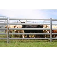 Buy cheap Used Corral Panels,Used Horse Fence Panels,Galvanized Livestock Metal Fence Panels from wholesalers