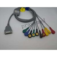 China Hangzhou beneware ECG holter cable with 10 / 12lead ecg cable with snap wholesale