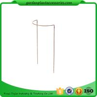 China Metal Garden Flower Supports / Half Round Plant Supports For Climbing Plants wholesale