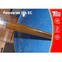 China Non Systemic Insecticide For Fruit Trees Fenvalerate 20% EC CAS NO 51630-58-1 wholesale