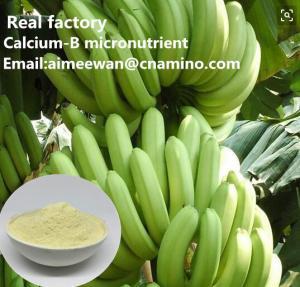 China Calcium-B amino acid micronutrient for banana organic fertilizer factory on sale