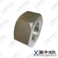 China DuplexZeron100/S32760 China supplier stainless steel hex heavy nut ASME B18.2.2 wholesale