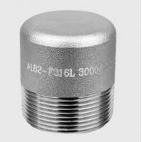 China High Pressure Forged Steel Fittings Thread Plug NPT SH3410 HG21634 wholesale