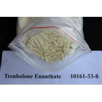 China Trenbolone Hair Loss Treatment Steroids Powder / Injection 10161-33-8 Trenbolone Enanthate wholesale