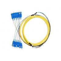China 12 core , 24core Indoor Fiber Optic Patch Cord with SC connector wholesale