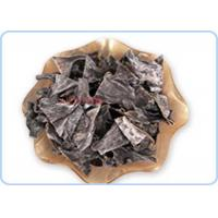 Quality 100% Pure Natural Food Grade Dry Kelp Seaweed / Undaria Pinnatifida / Dried Brown Seaweed for sale
