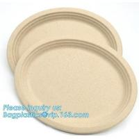 China biodegradable tableware 5 compartment sugarcane tray,100% Biodegradable Disposable Sugarcane Paper Raw Material Composta on sale