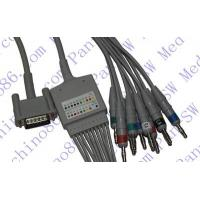 China HP one piece 10-lead ECG cable with leadwire wholesale