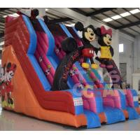 Quality Big Inflatable Water Slides For Pools / Mickey Mouse Inflatable Double Water for sale