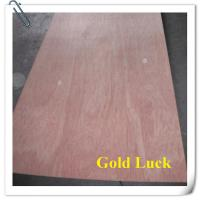 China Hot Sale Bintangor /Okoume Plywood for Furniture wholesale