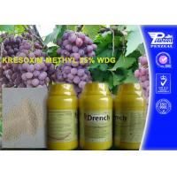 China Garden Safe Apple Tree Fungicide Kresoxim - Methyl 25% Wdg 143390-89-0 wholesale