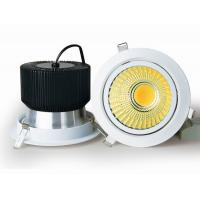 OEM Manufacture High brightness 40W LED COB Downlight made in china