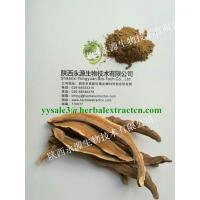 Quality Reishi Mushroom Extract, Chinese manufacturer supply, Polysaccharides 10%, Shaanxi Yongyuan Bio-Tech for sale