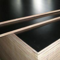 China Factory direct sale black and brown film faced plywood, cheap concrete shuttering plywood on sale