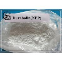China NPP / Durabolin /  Nandrolone phenylpropionate Raw Steroid Powders for Bodybuilding CAS 62-90-8 wholesale