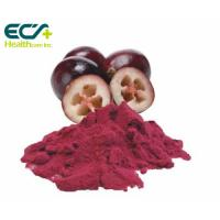 China Red Cranberry Fruit Powder , Natural Food Supplement Powder Prevent Cancer wholesale