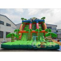 China Inflatable Pool Water Slides For Adults / Fun Garden Water Slides CE wholesale