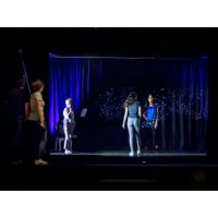 China 3D Projection System 3D Holographic Display Hologram Stage Show Pepper Ghost Technology wholesale