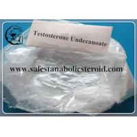 China Bodybuilding Testosterone Steroid / Testosterone Undecanoate Hormone 5949-44-0 wholesale