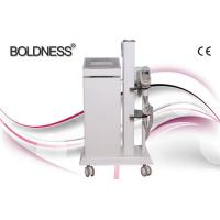 China Painless Beauty Salon Cryolipolysis Slimming Machine , Multifunction Beauty Equipment wholesale