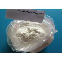 China Weight Loss Injection White Raw Steroid Hormone Powder Testosterone Propionate wholesale